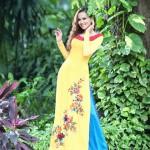diem-huong-jaune bleu motifs ao dai